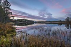 Autumn colors. (teetaira) Tags: nationalpark finland reflection forest sunset auringonlasku kansallispuisto heijastus tiilikka pilvet clouds