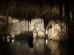 Mighty Mites (Rorymacve Part II) Tags: cavesofdrach caves underground water stalagmite stalactite rock majorca island mediterranean med cave tunnel passage undergroundriver