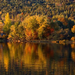 Autumn (malillea) Tags: scenery beautiful colors autumn reflections water landscapephotography landscape naturephotography natur nature