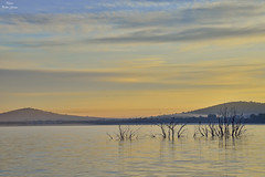 Soft sunrise (Peideluo) Tags: water waterscape nature paisaje clouds sky landscape sunrise amanecer cielo agua árbol