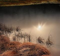 Die Sonne spiegelt sich im dunklen Karsee, Reif liegt über dem Gras. (MHikeBike) Tags: wald berge wasser bäume nationalpark schwarzwald nordschwarzwald murg murgtal baiersbronn huzenbach schönmünzach wandern wege ruhe berg radweg fahrrad weg