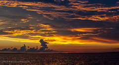 Post Sunset on Apalachicola Bay - Apalachicola, FL (Paul Diming) Tags: pauldiming summer apalachicolaflorida franklincountyflorida apalachicola landscape dailyphoto franklincounty floridapanhandle d7200 florida unitedstates us