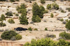 Matchbox in the Desert (trainmann1) Tags: nikon d7200 amateur co colorado trip vacation october oct 2018 fall west western scenic coloradonationalmonument monument nationalparkservice grandjunction rockformations rocks coloradoplateau granite rimrockdrive tiltshift blurred cars miniature driving handheld