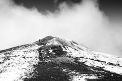 on the highest mountains we walked (gato-gato-gato) Tags: alpen alpin alpine berneroberland berneseoberland gebirge grindelwald hochgebirge jungfrau jungfraujoch jungfrauregion leica leicammonochrom leicasummiluxm35mmf14 mmonochrom messsucher mondlandschaft monochrom swiss topofeurope wandern wanderung black digital flickr gatogatogato gatogatogatoch hike hiking rangefinder tobiasgaulkech white wwwgatogatogatoch bern schweiz ch manualfocus manuellerfokus manualmode schwarz weiss bw blanco negro monochrome blanc noir mensch person human pedestrian fussgänger fusgänger passant switzerland suisse svizzera sviss zwitserland isviçre landschaft landscape landscapephotography outdoorphotography berge mountains mountain fels stein stone rock