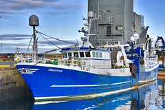 FR95 Aquarius - Fraserburgh Harbour - Aberdeenshire Scotland - 13/11/2018 (DanoAberdeen) Tags: danoaberdeen danophotography fraserburghscotland fraserburgh aberdeenscotland aberdeenshire trawlers trawlermen fishingtrawlers scottishtrawlers salmon haddock cod shellfish workboats tug northsea 2018 candid amateur autumn summer winter spring fraserburghharbour fish fishing fishingtown fishingport seafarers maritime whitefish whitefishport creels broch thebroch shipspotting shipspotters fishingboat northeast northeastscotland ship boat harbour lifeatsea shipbuilding marine northseafishing northseatrawlers fr95 aquarius shellfishport pelagic burgh faithlie fishmarket