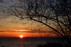 Alba sull'Adriatico (luporosso) Tags: natura nature naturaleza naturalmente nikon nikonitalia nikond500 alba sunrise adriatico civitanovamarche marche italia italy controluce contraluz silhouette siluetas sole sun