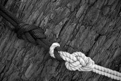 20181006-LRC96631 (ellarsee) Tags: bight bracketedforhdr doublefigure8 knot rope