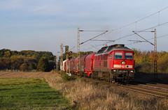 """[DE] Drakenburg - 233 478 """"DB Cargo"""" mit Stahlzug (Frederik L.) Tags: bahn bahnhof zug eisenbahn güterzug schiene gleis sonne herbst oktober lok lokomotive nienburg grosdiesel baureihe ludmilla deutschebahn"""
