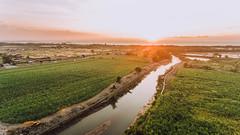A View of Matab-ang River, Talisay City, Philippines