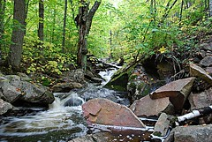 Chute-de-Luskville (Pwern2) Tags: luskville chutedeluskville luskvillefallstrail luskvillefalls eardleyescarpment ancientchamplainsea seaofchamplain precambrianrock chiefpontiac ottawanation ottawavalley clayplains josephlusk ncc landscape nature flora parks wild hiking keepitwild keepexploring exploring treesnotpeople forrest waterfall trees fallseason fall