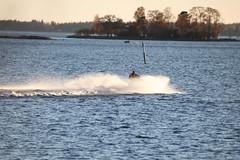 IMG_7747 (pekka.jarvelainen) Tags: joutsen swan vene auringonlasku sunset