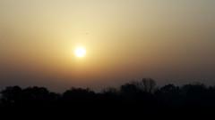 mood and fogg (Darek Drapala) Tags: mood fogg sun sky silhouette sunset skyskape lumix light landscape panasonic poland polska panasonicg5 warsaw warszawa morning mystery mystic nature natural