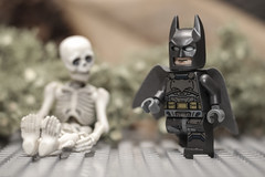 Dark Grey Batman with Gold Belt (N.the.Kudzu) Tags: tabletop toys lego batman plastic skeleton canondslr lensbabytwist60 lightroom