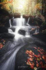DAROTS (Greg Delaville Photography) Tags: autumn waterfall valleedesdarots auvergne longexposure canon5dmarkiv canon1635