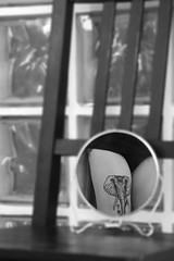 Remember (Raissa Fitzgerald Photographer) Tags: camminodisantiago santiago cammino caminodesantiago tattoo lephanttattoo tatuaggio elefante animale rcordo esperienze shooting blackandwhite biancoe nero specchio mirror
