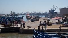 Harbour Essaouira (pan_orama) Tags: marokko maroc morocco essaouira beach harbour seagulls fish sun color travel