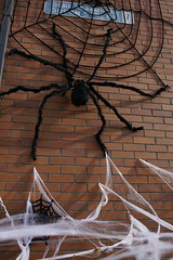 Halloween Decorations, Smithfield, Dublin 7, Ireland (Olivier K.) Tags: halloween decorations dublin ireland