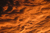 Flight From Hell (CoolMcFlash) Tags: sky dramatic sunset plane cloud cloudscape cloudporn orange nature fujifilm xt2 vienna himmel dramatisch sonnenuntergang flugzeug wolken bewölkt weather wetter natur wien fotografie photography xf18135mmf3556r lm ois wr