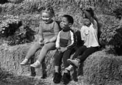 Film Test: Derev Pan 400 (Leslie Lazenby) Tags: yeager filmphotographypodcast fpp filmtest developertest fpp110 hc110 dilutionh limaoh apple harvest festival olympus om2n zuiko 50mm f14 kids strawbale facepainting