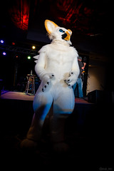 DSC08949 (Kory / Leo Nardo) Tags: pacanthro pawcon paw con pac anthro convention fur furry fursuit suiting mascot sona fursona san jose doubletree hotel california dance party deck animals costuming pupleo 2018