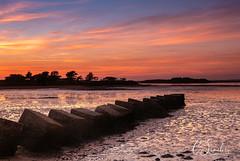 Bramble Bush Bay (C Sinclair) Tags: studland dorset bramblebushbay dragonsteeth lowtide mudflats tides sunset seadefence