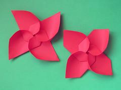 Girandola modulare e variante  - Modular Pinwheel and variant (Francesco Guarnieri) Tags: modularorigami modularstar spiral spirale origamistar unit francesco guarnieri modular 3dstar decoration fiore flower geometric geometry papercrafts pliage ring star threedimensional paperfolding papiroflexia modularpinwheel origami