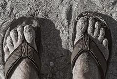 Beach Feet (MJRodock) Tags: olympus em5markii mzuiko 40150mm f28 sand beach bw