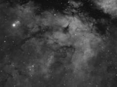 IC1318 (Photonen-Sammler) Tags: ic 1318 hydrogen nebula astrophotography astronomy