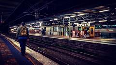 Central Railway Station (missgeok) Tags: centralrailwaystation railway platform commuters perspective trains rails transport central centralstation sydney australia newsouthwales leadinglines composition lighting mood