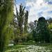 Nicolae Romanescu Park