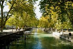 SAM_0192a (anna podkowinska) Tags: annecy lac arbre tree drzewo jesień automne autumn parc park eau woda wather