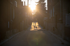 Brothers (cookedphotos) Tags: 2018inpictures toronto ontario canada ca canon 5dmarkiv streetphotography brockton brothers boys alley laneway road sun sunlight sunset light silhouette shadow love family summer 365project p3652018