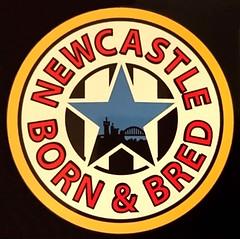 Newcastle Born (crusaderstgeorge) Tags: crusaderstgeorge badges newcastleupontyne yayemanhinny bornbred