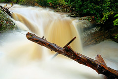 Little Stony Creek: X marks the spot (Shahid Durrani) Tags: little stony creek cascades pembroke virginia hurricane michael