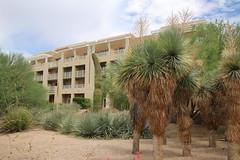 JW Marriott Desert Ridge (Phoenix, Arizona - July 2018) (cseeman) Tags: jwmarriott jwmarriottdesertridge desertridge phoenix arizona hotel resorthotel resort barbie2018 marriott summer summerinarizona gardens cactus trees marriotthotels saguaro saguarocactus hotelgardens