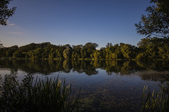 Country Park Reflection (CraDorPhoto) Tags: canon6d landscape waterscape trees nature outdoors reflection water calm tranquil sky blue uk cambridgeshire