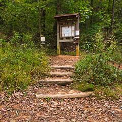 Falls Creek Trail #31 - 1 (MarksPhotoTravels) Tags: greenvillecounty kiosk southcarolina trail