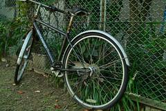 20181018_SDIM5412 (NAMARA EXPRESS) Tags: street bicycle vehicle fence daytime autumn fall fine outdoor color toyonaka osaka japan spp spp661 foveon x3 sigma dp2 namaraexp