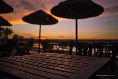 Sunrise in the esplanade (Capturedbyhunter) Tags: naturepentaxcorucheweddings fernando caçador marques fajarda coruche sorraia ribatejo santarém portugal pentax k1 smc pentaxf 28mm f28 landscape paisagem bokeh dof sunrise nascer do sol pentaxart esplanada