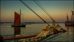 Seglarträff Stralsund (angelofruhr) Tags: deutschland stralsund wasser hafen mecklenburg segelschiffe zeesboot historischeschiffe ostsee balticsea strelasund sonnenuntergang segel seglarträff