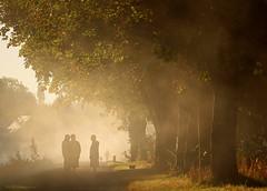 Un matin d'automne  ... (Eric DOLLET - Ici et ailleurs) Tags: ericdollet bretagne canaldilleetrance evran automne