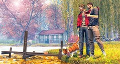 Sometimes, I wish I could have more time for my friends. (brian.werefox) Tags: findyours friends photography autumn dogs avatar secondlife ascend modulus con notsobad vale koer jian catwa slink signature {coldash} wrong