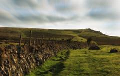 Dartmoor (Sourton Down) (Mark Wasteney) Tags: devon dartmoor westcountry moorland tors landscape wall fence photostitch fencefriday fencedfriday