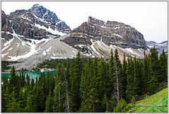 The Majestic Beauty of the Canadian Rockies. (Bill E2011) Tags: canada alberta banff jasper canon beauty mountains forests fantastic