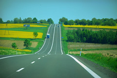 tutte le strade portano a ...Roma (alice 240) Tags: tuttelestradeportanoaroma landscape polska sky ngc nationalgeographic agriculture europe dream poetry nikon magic nature flickr travel tourism poland road country europa auto campi yellow yourbestoftoday autostrada simplysuperb
