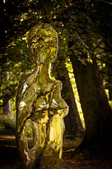 Teesdale (tonguedevil) Tags: landscape outdoor view trees leaves foliage autumn woodland reflections figures mirror sculpture artwork colour light low force teesdale
