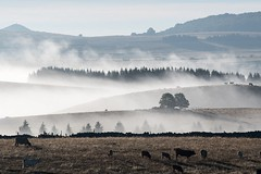 Marchastel, Lozére (lyli12) Tags: leverdesoleil brume mist paysage landscape lozère aubrac languedocroussillon france