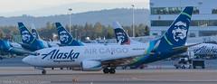 Alaska 737 Cargo at ANC (Alaskan Dude) Tags: travel alaska anchorage anchorageinternationalairport airplane airplanes airliners aviation planes planespotting planewatching