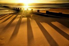 Cast a Long Shadow (PeskyMesky) Tags: aberdeen aberdeenbeach sunrise sunset shadow beach landscape canon canon6d eos