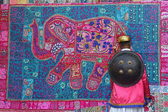 GUARDIAN OF PINK (GOPAN G. NAIR [ GOPS Creativ ]) Tags: gopsorg gopangnair gops photography creativ photo rajasthan jaipur india pink city rajput shield soldier carpet elephant handicraft